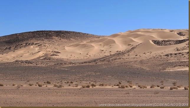 Desierto-215