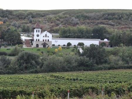 Basarabia - Drumul Vinului: Domeniul Purcari