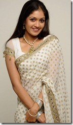 actress_meghna_raj_in_saree_cute_photo