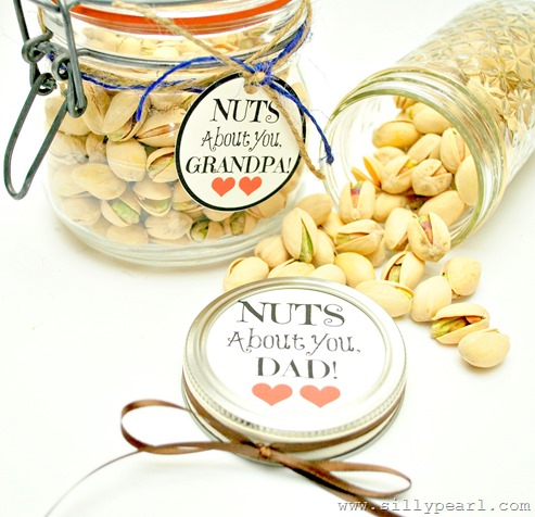 Nuts About You Fathers Day Printable - The Silly Pearl