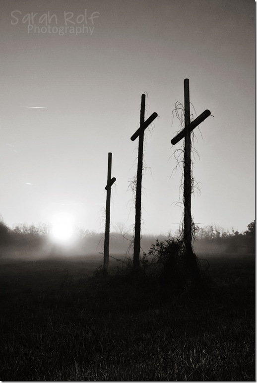 crosses-in-the-sun