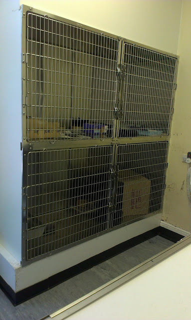Cages for nursing cats and kittens