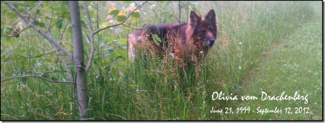 2012.9.12 Olivia