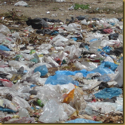 plastic-bags[1]