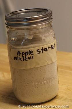 apple-starter_0680