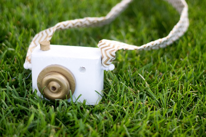 camera toy