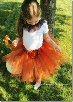 miss pumpkin pie tutu by daydream believers