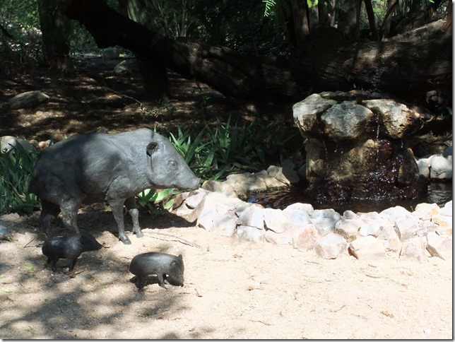 javelina sculptures 8-20-2012 9-45-08 AM 3616x2712