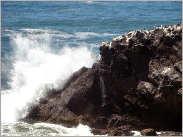 Oregon-Coast-09