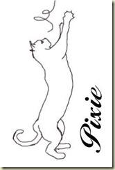cat38