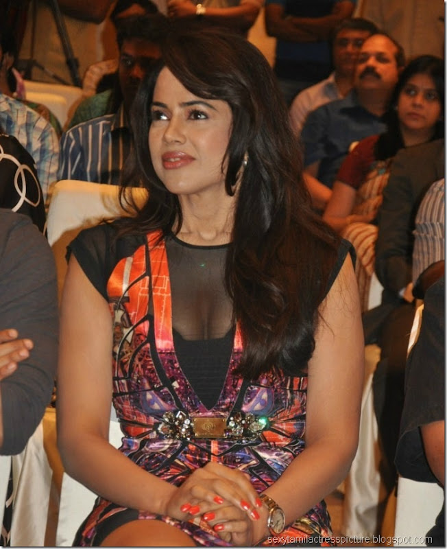 sameera_reddy_hot_stills (9)