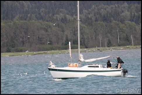 Sail-Down-2