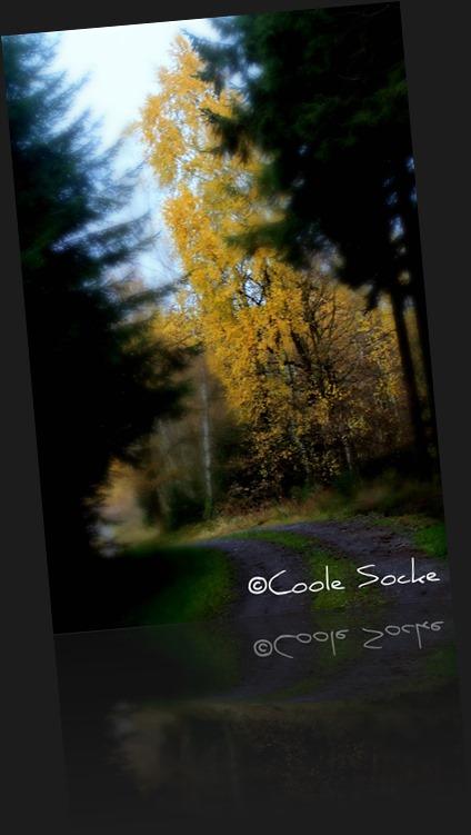 ©Coole Socke