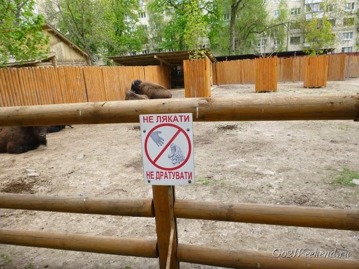 Kiev_Zoo_11.jpg