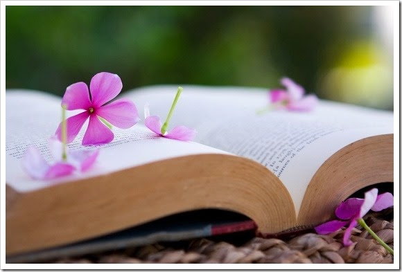 Lectura semana don dividendo 19-2014