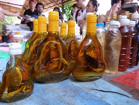 Tur Delta Mekongului: brandy vietnamez cu scorpion inauntru