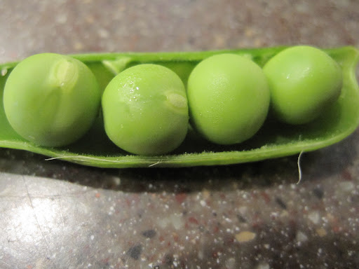 I love fresh peas right out of the pod
