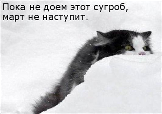 1238608167_36
