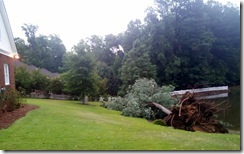 Storm blew tree down at house