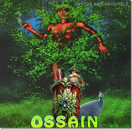 Orixá Ossain do Candomblé é dono das folhas - ervas-ewe - isaba - Osanhe - Osonyn
