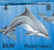 dolphins300c