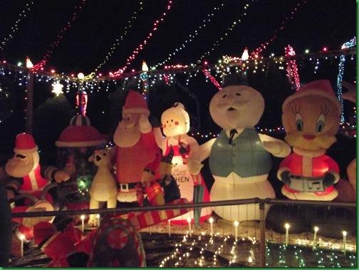 Holiday Lights 037