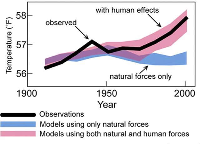 Observed Global Temperatures (black curve) compared with the spread among model simulations that include only natural factors (blue band) and that include both natural and human factors (red bad). Only the model simulations that include human factors are able to reproduce the observed warming Graphic: Second Assessment of the U.S. Global Change Research Program, 2009