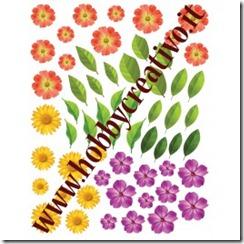 floralies-fiori-mignon-3