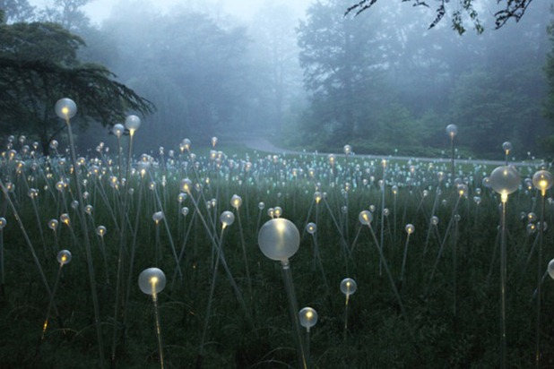bruce munro 1
