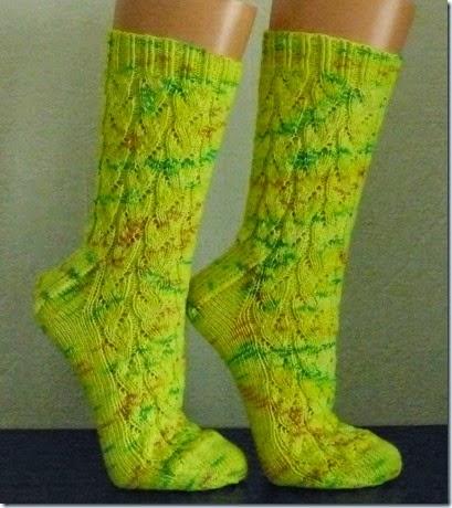 2015_04 Socken River rapid socks (6)