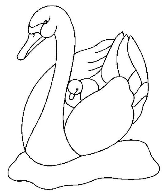 Dibujos de cisnes - Como pintar mosaicos ...