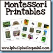 Montessori Printables 100