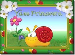 primavera (1)