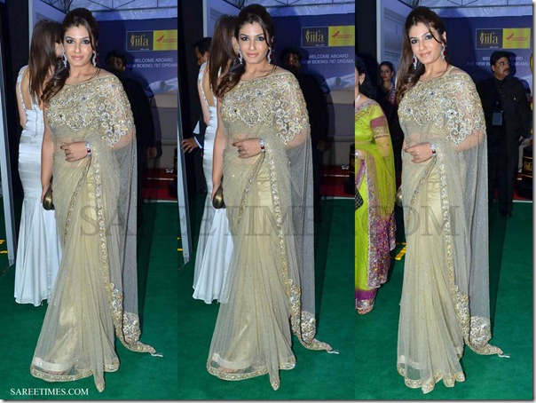 Raveena_Tandon_Embroidery_Shimmer_Saree_IIFA_Awards