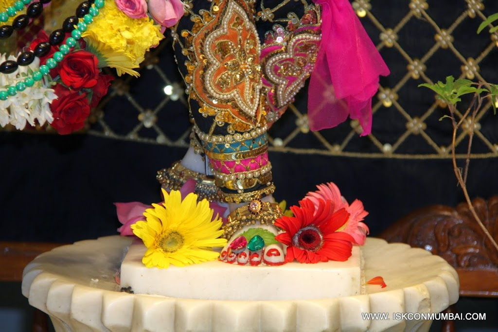 Lotus Feet Of Nityananda
