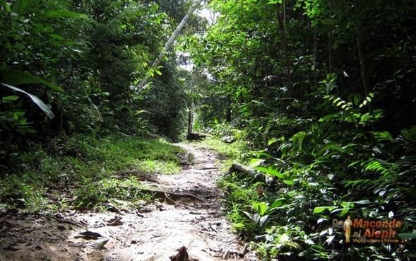 Viaje Amazonas Maloka Makuna  8