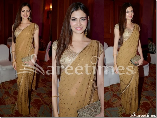 Gold_Embroidery_Georgette_Saree