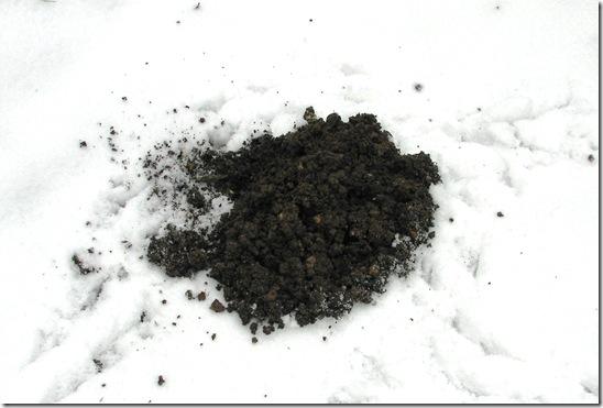 20130119 Molehill in snow (2)