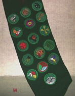 aaa-badge sash