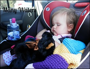Many Waters Car Ride