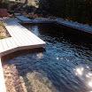 2015 03 01 piscine bois modern pool (140).JPG