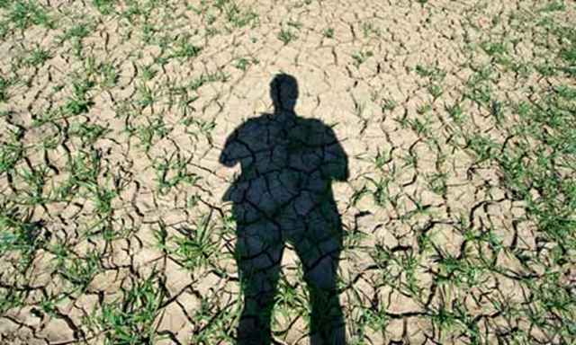 A human shadow is seen on a dried out field after drought in Germany. Photo: Patrick Pleul / EPA