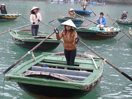 Vietnameza goala