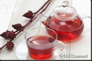 chá de hibisco 01