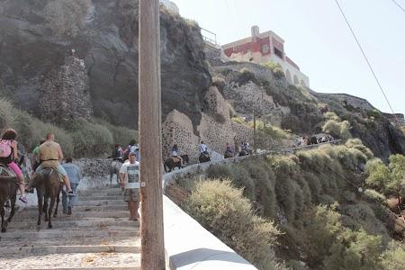 04. Magari in Santorini.JPG