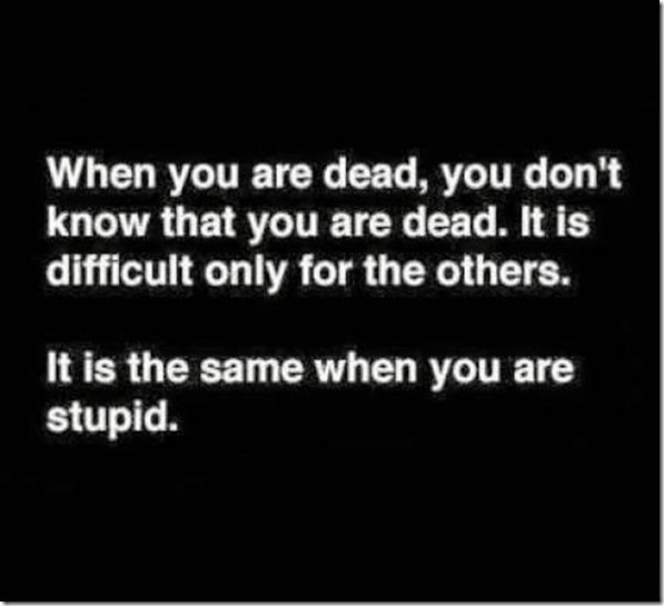 Dead and Stupid