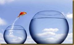 fish tank jump2