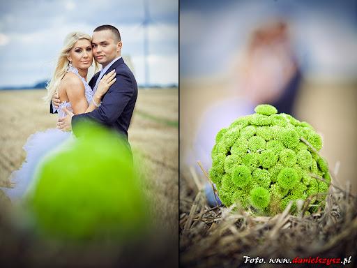 Kalisz Pomorski zdjęcia ślubne