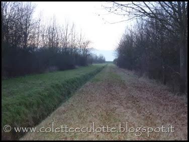 Passeggiata al Dosolo - 1 gennaio 2013 (64)