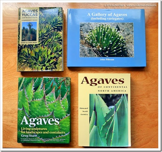 141218_four_agave_books_002